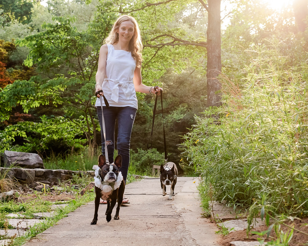 How to choose the best pet photographer in Atlanta - A Guide for Pet parents