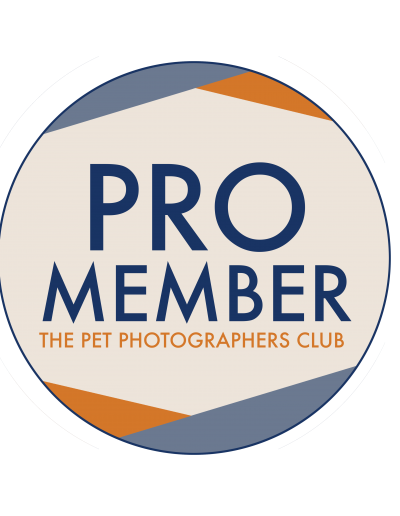 pro-member-badge-downlaod