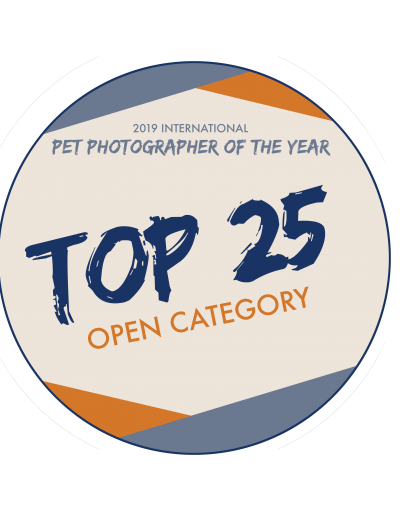 Top25Badge-open