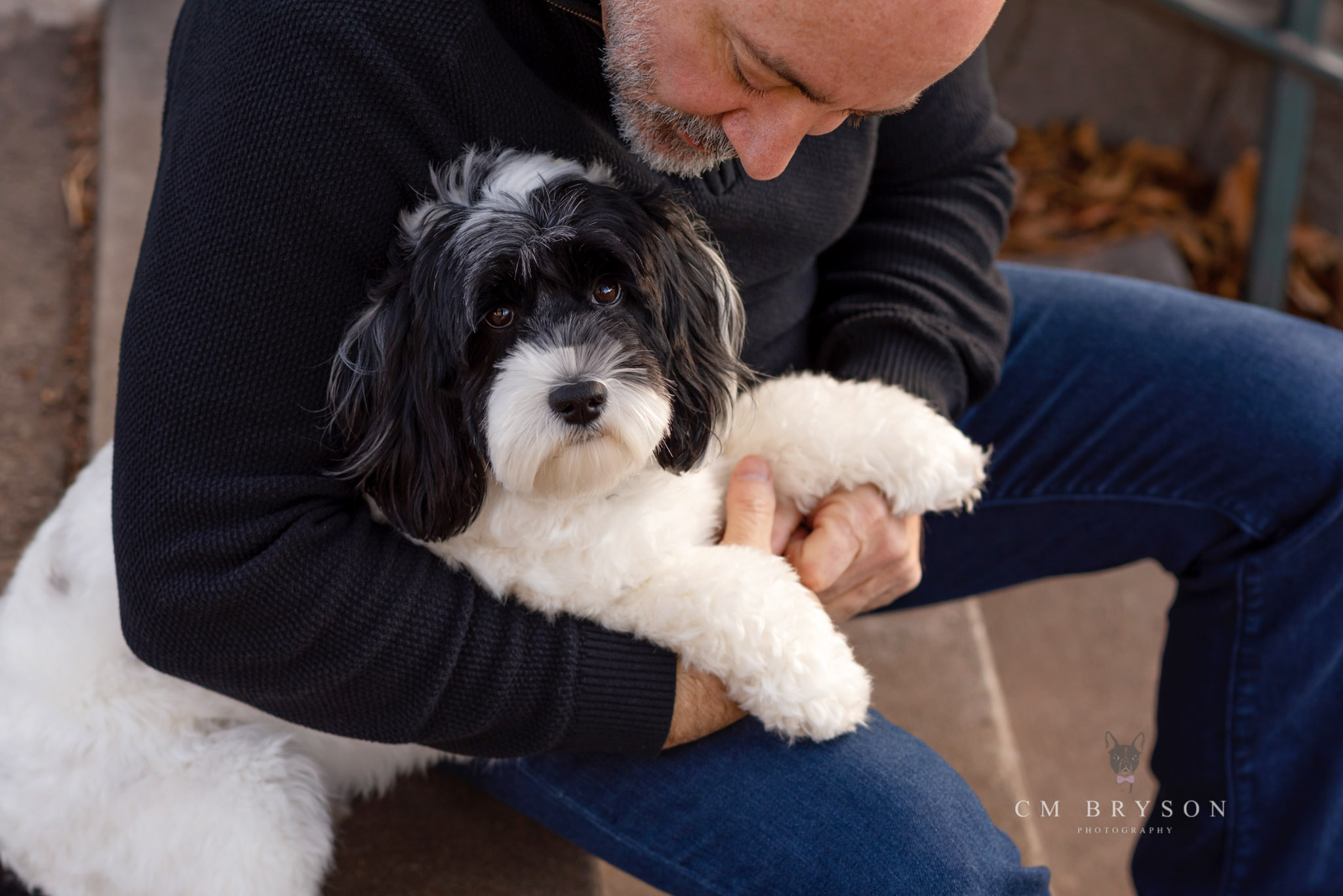 Labrdoodle sits in her dad's lap while they share a moment of connection.