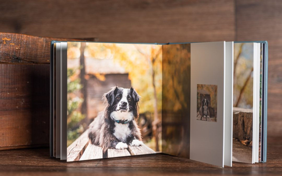 A photo album available from Atlanta pet photographer, CM Bryson