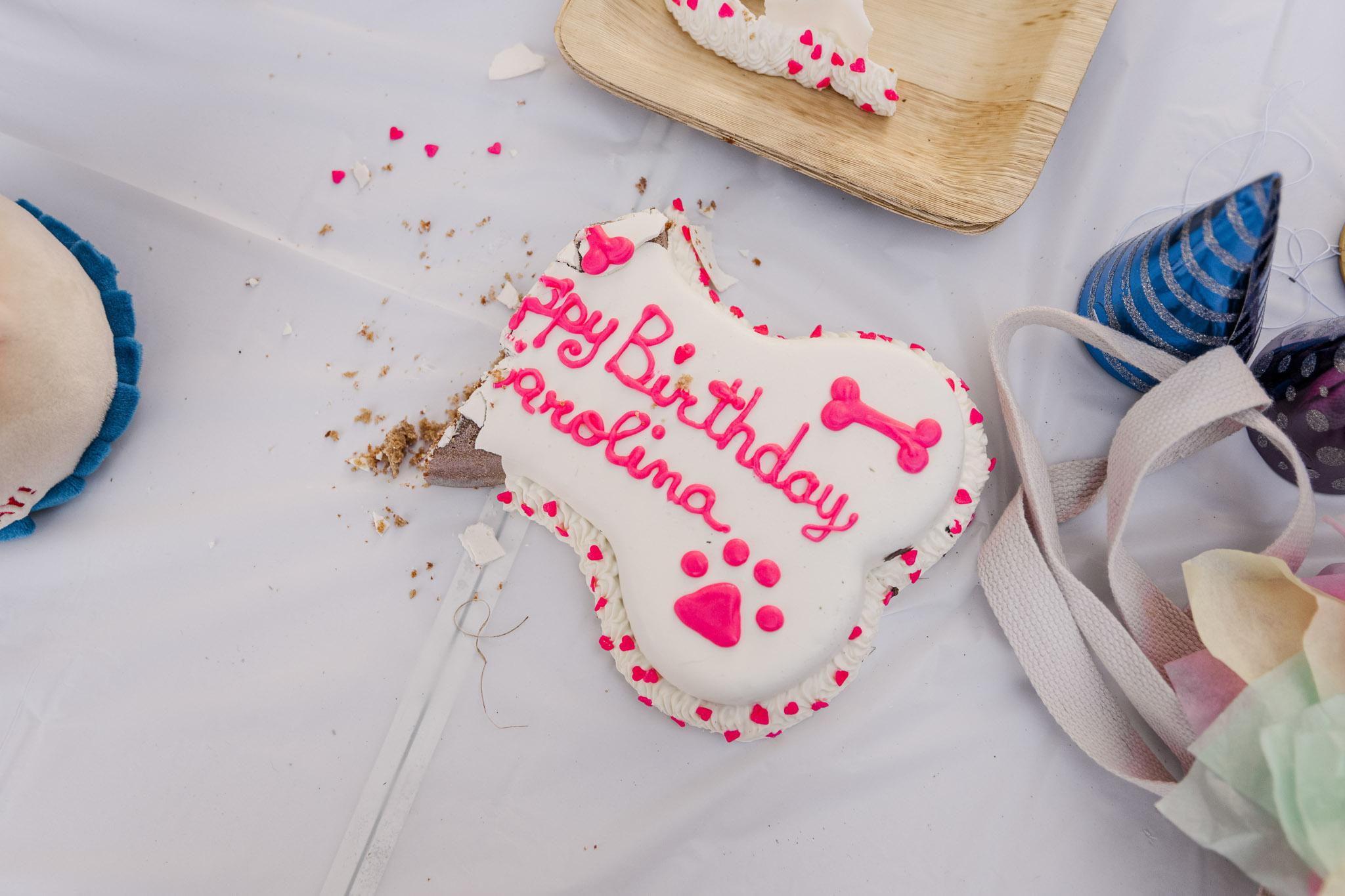 Happy birthday Carolina - a rescue puppy celebrated her gotcha day.